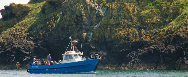 Skomer Cruises - Dale Princess
